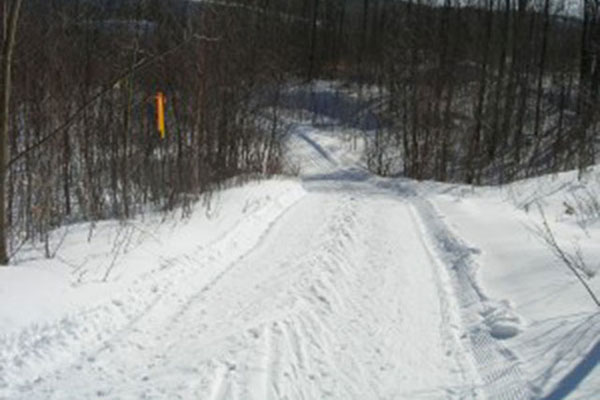 Canadian Ski Marathon: My view from the back of the pack